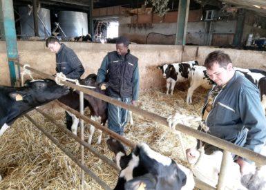 les-capa-metiers-de-lagriculture-parlent-de-leur-formation