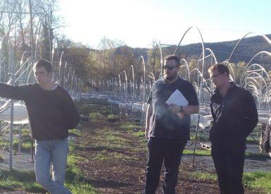 rencontre-avec-un-producteur-de-petits-fruits-pour-les-bprea-en-formation-continue