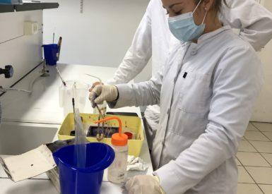 le-yaourt-en-laboratoire