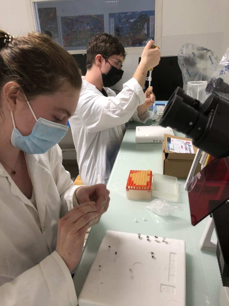enquete-scientifique-avec-test-pcr-pour-les-bts-anabiotec