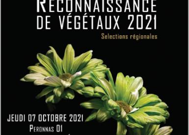 inscription-de-nos-bp-ap-au-concours-de-reconnaissance-de-vegetaux